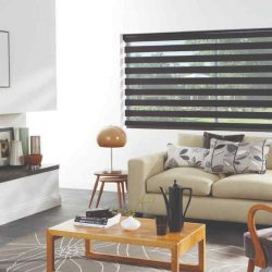 Vision day and night blinds